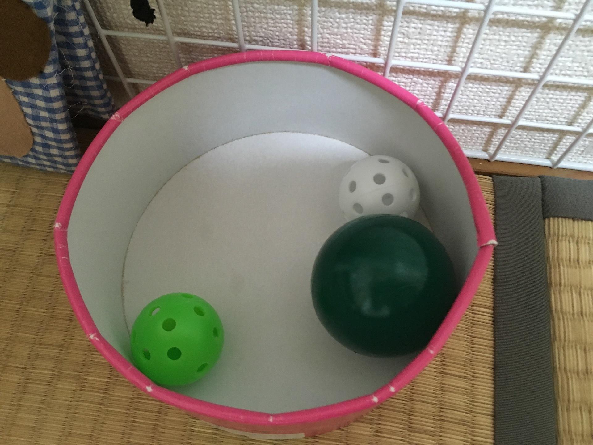 コロコロ ボール